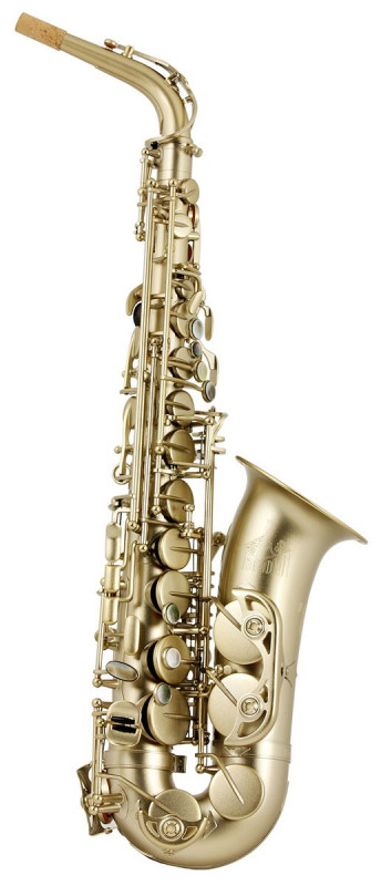 TREVOR JAMES HORN 88 ALTO SAX OUTFIT - GOLD FROSTED