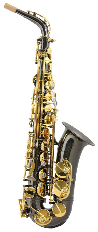TREVOR JAMES SR ALTO SAX OUTFIT - BLACK. GOLD LACQUER KEYS