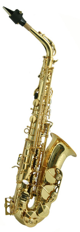 TREVOR JAMES SR ALTO SAX OUTFIT - BRONZE. GOLD LACQUER KEYS