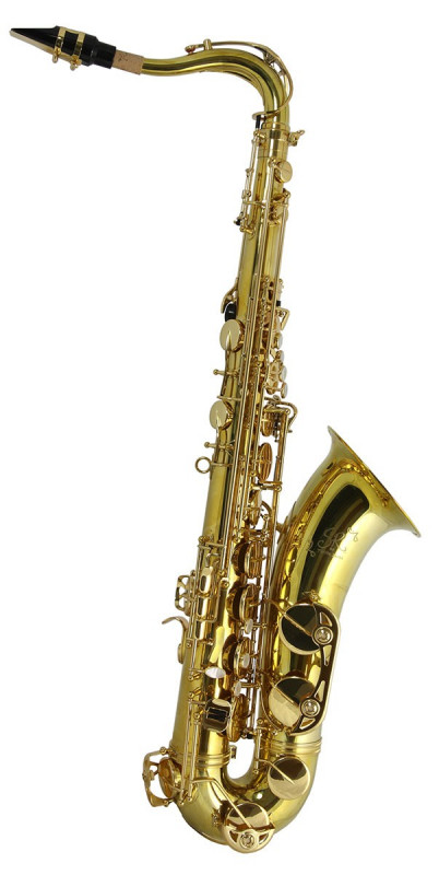 TREVOR JAMES SR TENOR SAX OUTFIT - GOLD LACQUER